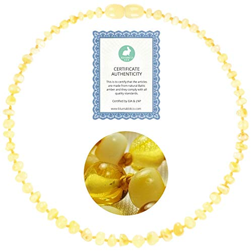 Amber Necklace (13 inches)   GIA Certified 100% Pure Baltic Amber - Unisex (Lemon Milk Amber Jewelry Necklace)