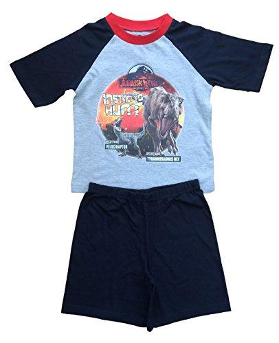 Jurassic World - Pijama Dos Piezas - niño Gris Gris
