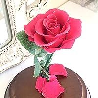 美女と野獣 バラ 天然ダイヤ付き ガラスドーム 真実の愛の贈り物 (ピンク)