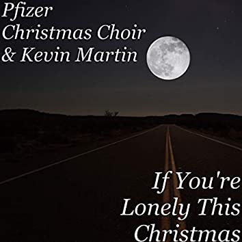 If You're Lonely This Christmas