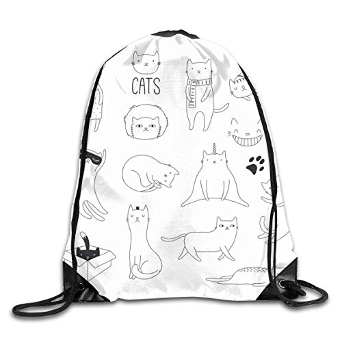 Drawstring Backpack Sports Gym Bag for Women Men, D1082 Cat Scribbles Cute Lovers In A Box Grumpy Look Kitten Cuteness With Whiskers