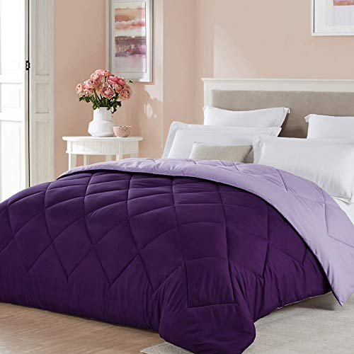 Seward Park Solid Color Reversible Comforter, Hypoallergenic Plush Microfiber Fill, Duvet Insert or Stand-Alone Spring or Summer Comforter, All Season Blanket, Lightweight, Full/Queen, Plum/Purple
