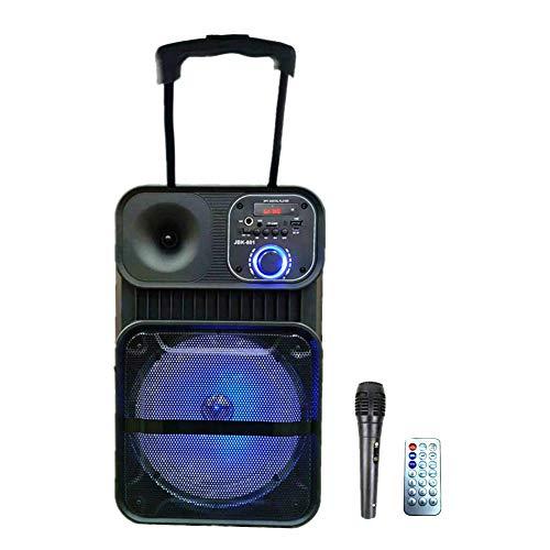 "Sistema de Sonido portátil Ruedas 8"" Altavoz Karaoke Inalámbrico portátil con micrófono Reproductor Recargable Radio FM MP3 USB Mando(Azul801)"