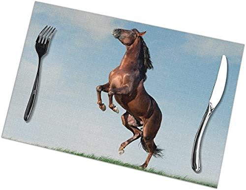 Tovagliette Tovagliette Marrone Cavallo Andaluso Che Si Alzano Set di 6 Tovagliette in Tessuto Spesso per Tavolo da Pranzo Tovagliette Lavabili per Decorazione da Tavola,12x18 Pollici