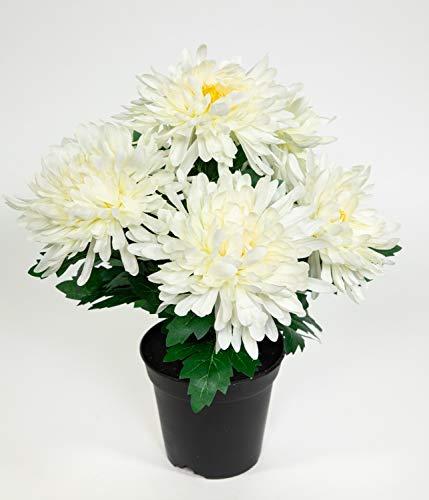 Chrysantheme 32cm weiß-Creme im Topf GA Kunstpflanzen künstliche Pflanzen Blumen Kunstblumen