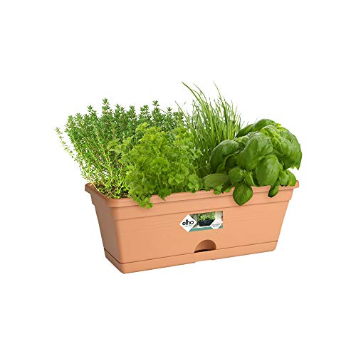 Elho Green Basics Fioriera, Terra, 30 cm