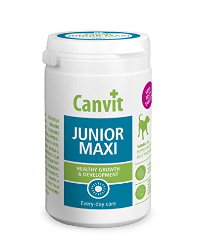 Canvit Junior puppy vitamins amino acids and probiotics dog supplement - highly palatable tablets to support healthy development and growth in puppies and young dogs (Junior Maxi, 76 Tablets)