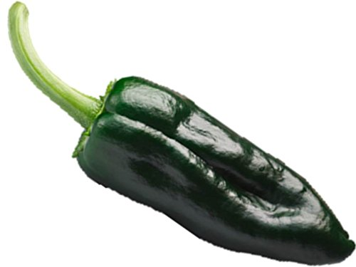 Ancho Poblano Pepper Seed Mild Hot Plant Tex Mex Cook #60 (65 Seeds, or 1/2 Gram)