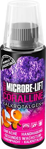MICROBE-LIFT Coralline – beschleunigt das Wachstum von Kalkrotlagen im Aquarium, hochkonzentriert und ergiebig, 118ml