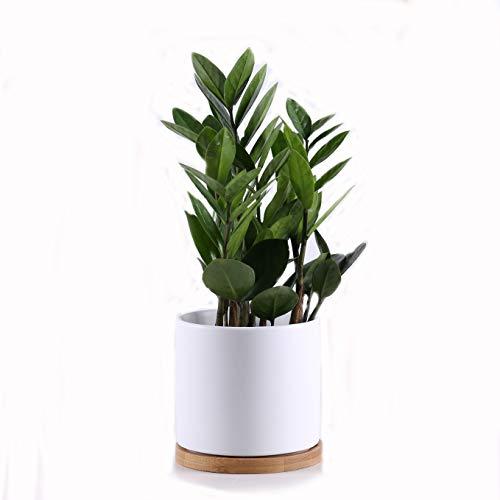 Gleasyshop vasi Moderni in Ceramica con Base in bambù per Uso Interno o Esterno. Grande