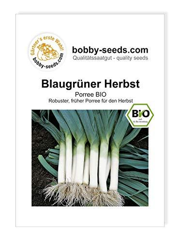 blaugrüner Herbst BIO-Porreesamen von Bobby-Seeds, Portion