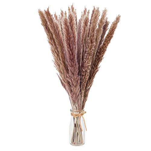 Natural Dried Pampas Grass Decor, 65pcs