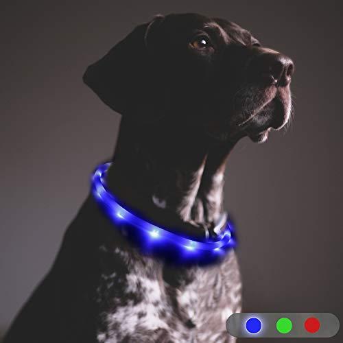 Toozey LED Leuchthalsband Hund - Dauerlicht für 20 Stunden - USB wiederaufladbar Längenverstellbar Nacht-Sicherheit Hundehalsband für Hunde und Katzen, 3 Modus, Blau