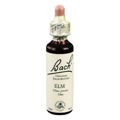 Bachblüte Elm, 20 ml