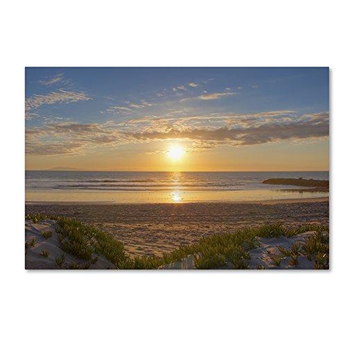 Pierpont Sunset Artwork by Chris Moyer, 22 x 32