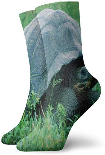 BEDKKJY bemanning sokken schildpad in de jungle geweldig unisex korte laarzen voorraad gift sok voor jeugd