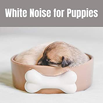 White Noise For Puppies, Dogs, and Cats for Relaxation