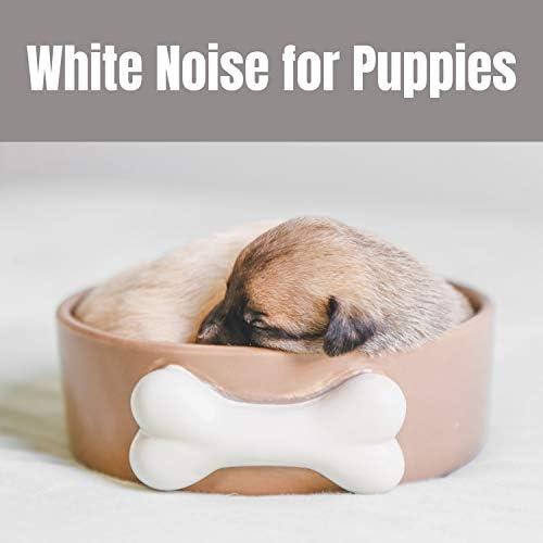 White Noise Sleep Sounds, White Noise Baby Sleep & White Noise Therapy