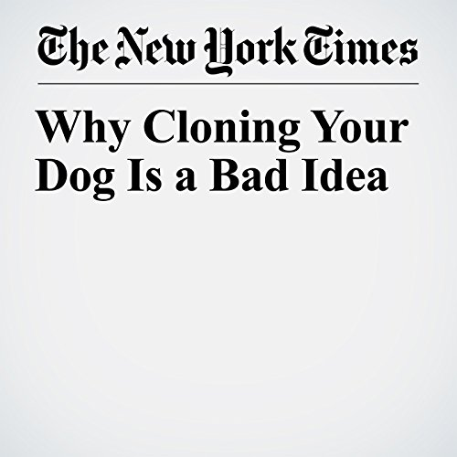 Why Cloning Your Dog Is a Bad Idea copertina
