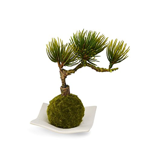 CUPBON『松・吹き流し(苔玉-白波皿-)造花盆栽』