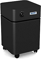 best large room air purifier