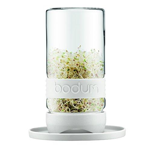 Bodum Grow Verde Bicchiere per Germogli in Vetro, 1.0 l, Color Crema 11486-913