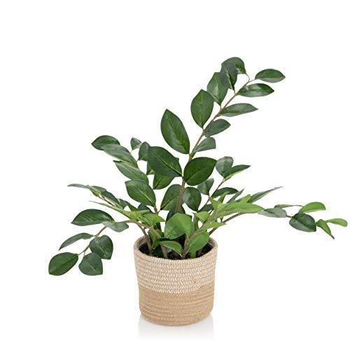 hjh OFFICE Kunstpflanze ZAMIE Höhe 50 cm Grün Deko Zamioculcas Zimmerpflanze Glücksfeder künstlich, 871008