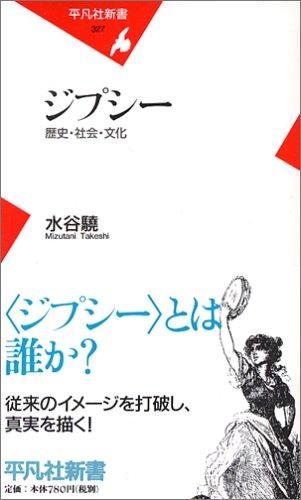 ジプシー 歴史・社会・文化 (平凡社新書)