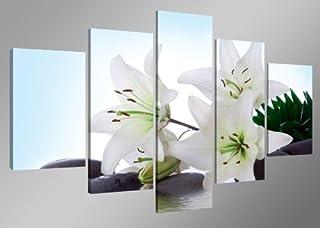 comprar comparacion Cuadros en Lienzo Flores 160 x 80 cm Modelo Nr. 5504 XXL Las imágenes Estan Listas, enmarcadas en Marcos de Madera auténti...