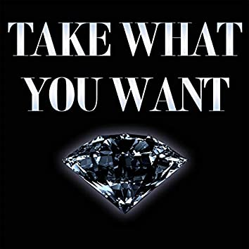 Take What You Want (Instrumental)