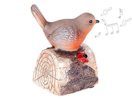 Alsino Oiseau décoratif à détecteur de mouvements Qui siffle et Chante Quand il y a du Passage en polyrésine Décoration idéale pour Le Jardin, Le Balcon ou l'intérieur, Choisir:78/6258 Oiseau 3