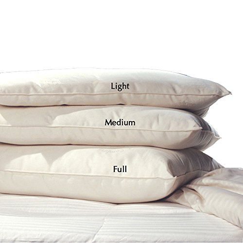 Lifekind Certified Organic Pure Wool Pillow
