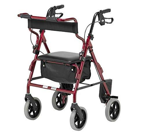 Patterson Medical - Andador y silla de transporte 2 en...