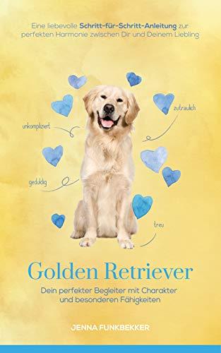 Golden Retriever: Dein perfekter Begleiter mit Charakter und besonderen Fähigkeiten