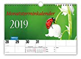 Monatsterminer 2019 mit Fotocover und Wire-O-Bindung