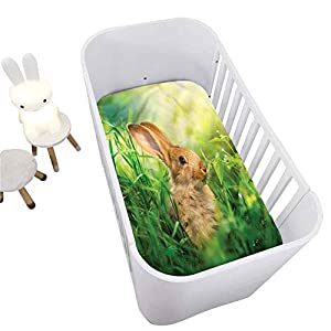 Rabbit Crib Fitted Sheet,Rodent in Green Grass Meadow Decorative Microfiber Crib Sheet for Standard Crib and Toddler mattresses Nursery Bedding Sheet Crib Mattress Sheets for Boys and Girls,28″ x 52″