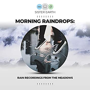 ! ! ! ! ! ! ! ! Morning Raindrops: Rain Recordings from the Meadows ! ! ! ! ! ! ! !