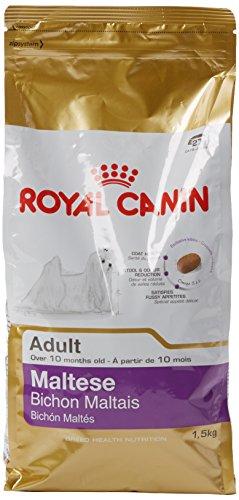 ROYAL CANIN Maltese 24 Adult 1,5 kg, 1er Pack (1 x 1.5 kg)
