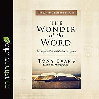 Wonder of the Word audiobook cover art