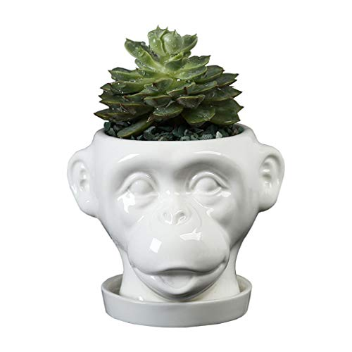 Gemseek Ape Head Succulent Planter Pot with Drainage Tray, White Ceramic Cactus Flower Container, Animal Face Bonsai Holder for Indoor Plants