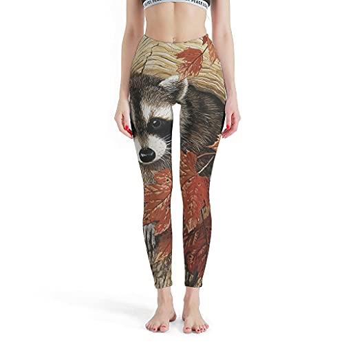 Leggings de mapaches para mujer con estilo de pilates pantalones de yoga para gimnasio