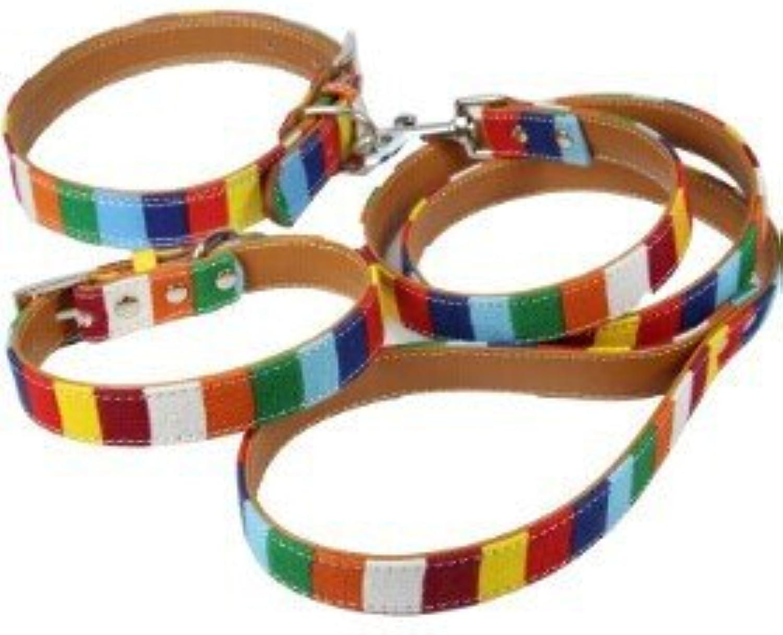 (1 collar+1 leash) S M L XL XXL Leather Dog collar Led Set Designer Cavas Pu Leather colorful Plain Pet Dog Collar Leash Set