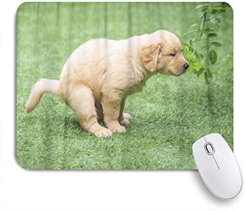 Benutzerdefiniertes Büro Mauspad,Hund Netter Golden Retriever Welpe, der entzückendes Tierbogen-Eckzahnjunges kackt,Anti-slip Rubber Base Gaming Mouse Pad Mat
