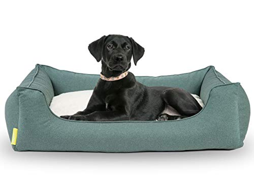 Hyggins Dreamer Perfect Hundebett | Wendekissen orthopädisch | Bezug abnehmbar und...