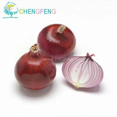 100 / bag frais géants Oignon violet Graines potagères 95% + germination, les graines végétales oignon maison jardin