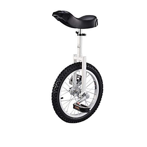 LQRYJDZ 16 pulgadas de la rueda monociclo a prueba de fugas butílico del neumático rueda de ciclo al aire libre Deportes de ejercicio físico Salud, sola rueda Equilibrio de bicicletas, viajes, coche a