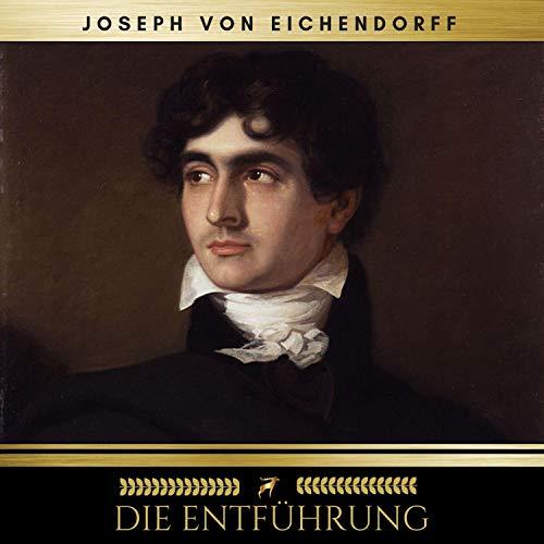 Die Entführung audiobook cover art