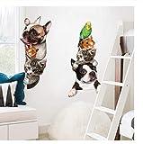 Etiqueta de la pared Perros Gatos Ratón Pájaro 3D Etiqueta de la pared Puerta divertida...
