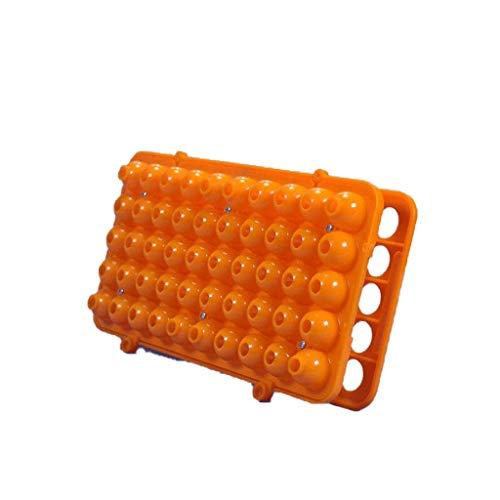NSDFG Reagenzglas-Rack - Kunststoff-Zentrifugenröhrchen-Rack Hochwertiges 50-Loch-Rack-Blutentnahmeröhrchen 5 mm bis 15 mm Zentrifugenröhrchen