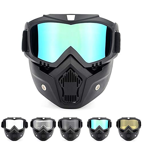 TZTED Motorcycle Abnehmbaren, Motorrad Schutzbrille für Open Face Helm Motocross Ski Snowboard, Motocross Off-Road Goggles,B
